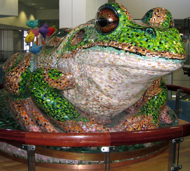 Big Sydney Frog